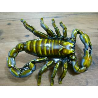 Scorpion Life Size Belt Buckle in Full Colour.It looks Alive!!